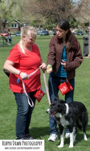 Johanna Teresi -Dog Obedience Course - Salt Lake City - Dog Training - Border Collie