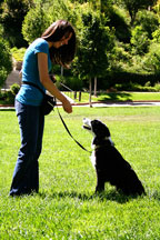 Johanna and Seiki performing Salt Lake City dog training