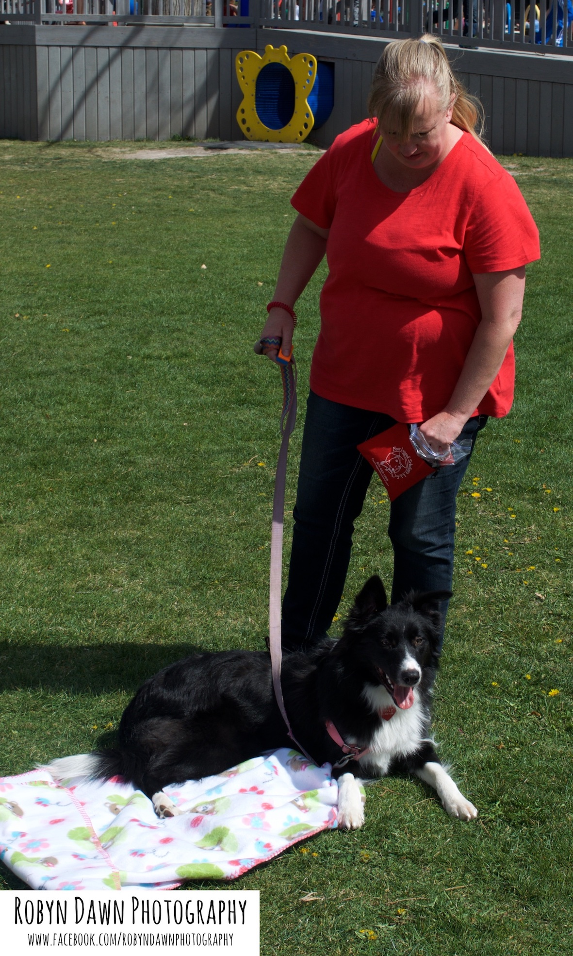 Intermediate Dog training, Salt Lake City, Utah