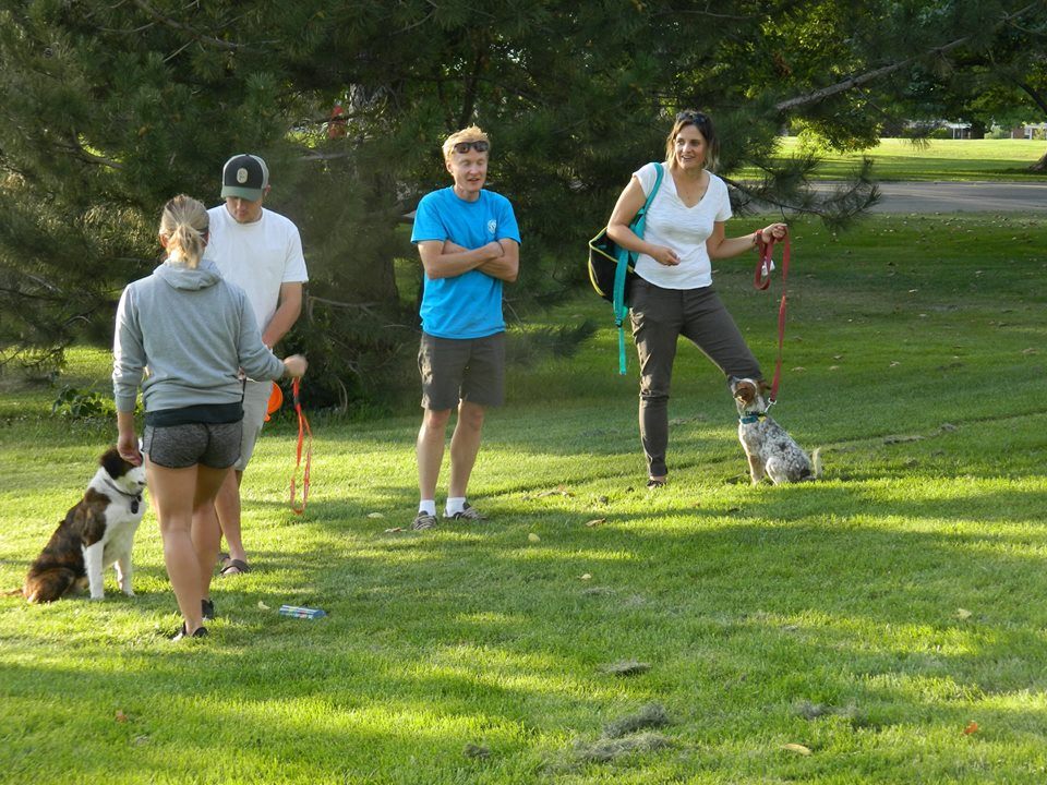 Group Obedience - Puppy Training - Salt Lake City